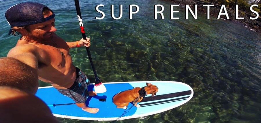 man and dog stand up paddle board in Kona, Hawaii